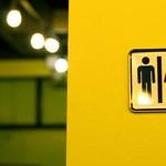 A CEU után az ELTE is indít gender tanulmányok szakot