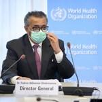 WHO-főigazgató a járványról: Hamarosan annyi áldozat lesz, mint 2020 egészében