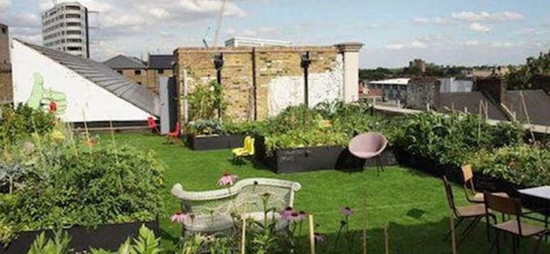 Pályázati pénzből újíthatja meg társasháza udvarát