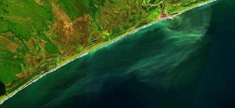 Rejtélyes szennyezés betegíti meg az embereket Kamcsatkán, az állatokat sem kíméli