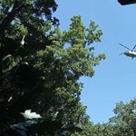 Az ügyészség vizsgálja a Vértesszőlősnél balesetet szenvedett siklóernyős mentésének körülményeit