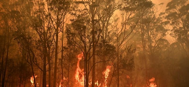 Az egész világot beboríthatja az ausztrál tűzvész füstje