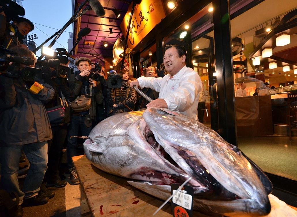 afp.15.01.05. - Tokió, Japán: a Sushi-Zanmai étteremlánc elnöke, Kijosi Kimura egy 180 kilogrammos kékúszójú tonhal társaságában a Tsukiji halpiachoz közeli éttermében - 7képei