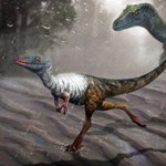 Ritka lelet került elő a dinoszauruszról, melynek mindössze 2 centis talpa volt