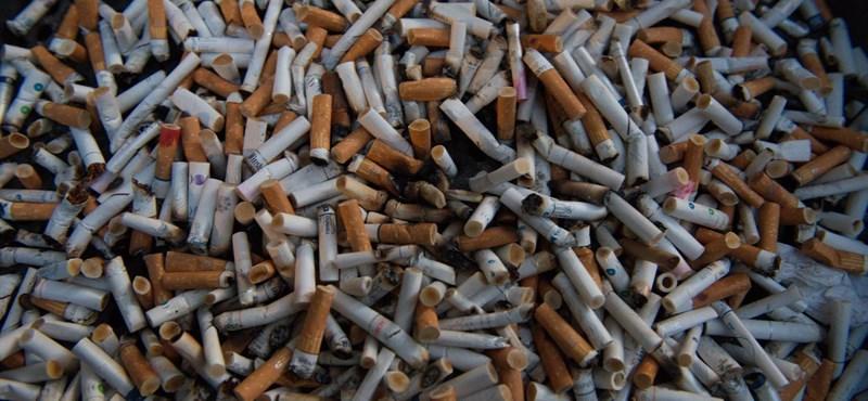 Csináltak egy alkalmazást, amelyik segíthet leszokni a dohányzásról