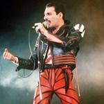 Tíz érdekesség, amit csak kevesen tudtak Freddie Mercuryról