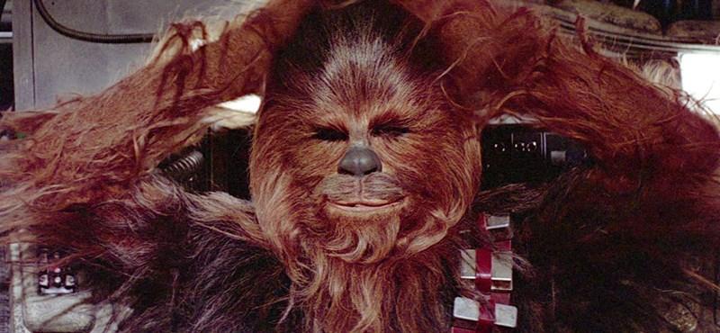 Meghalt Peter Mayhew, aki Chewbaccát játszotta a Star Warsban