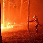 Ausztrál bozóttüzek: elküldik a turistákat, mielőtt tovább romlik a helyzet