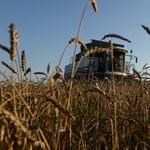 Agrárkamara: Az uniós támogatások miatt áll kihívás előtt Magyarország