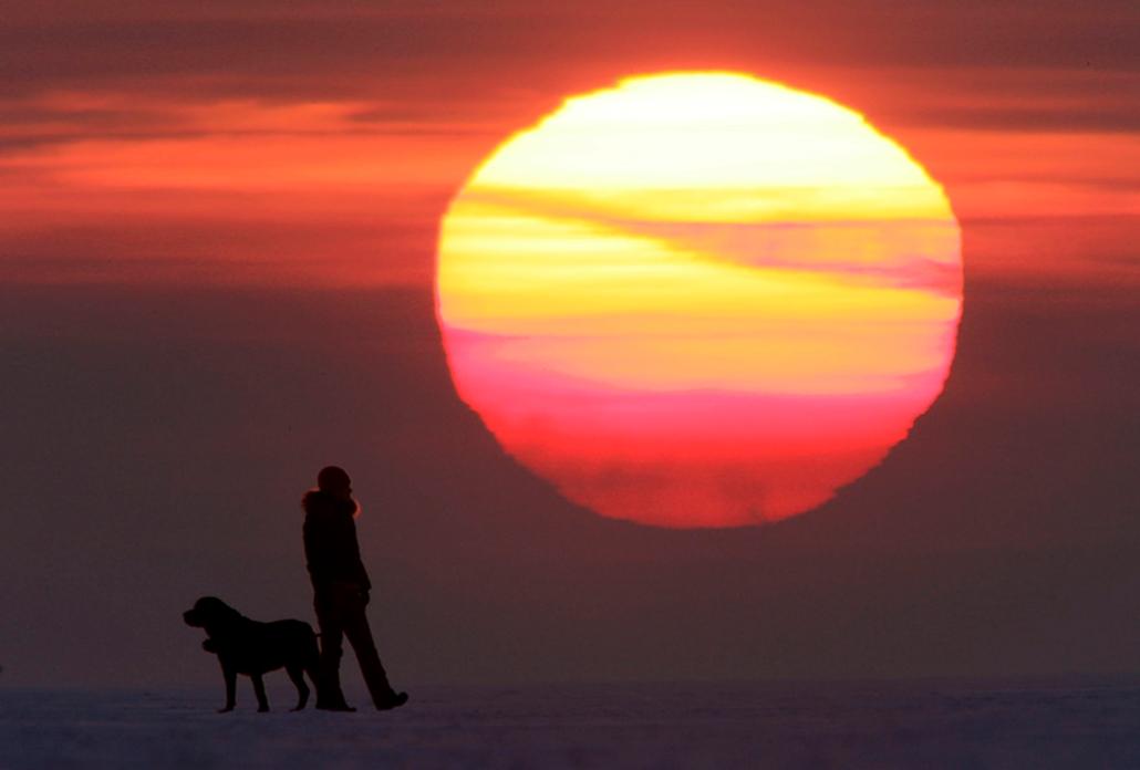 Egy nő sétál kutyájával Szentpétervár mellett