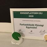 Edisonplatform-díjat nyert a Farkaskölykök Ifjúsági Egyesület