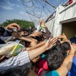 Ülő- és éhségsztrájkba kezdtek a menekültek a szerb határon