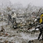 14 ezer eltűnt után kutatnak japán és amerikai katonák