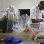 Meghalt az első kóli baktériumtól fertőzött beteg Franciaországban