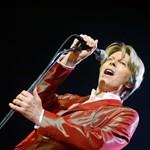 David Bowie és Cyndi Lauper is zenét ír a Spongyabob-musicalhez