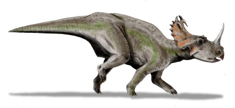 A világ legnagyobb dinoszaurusz-temetőjét tárták fel Kanadában