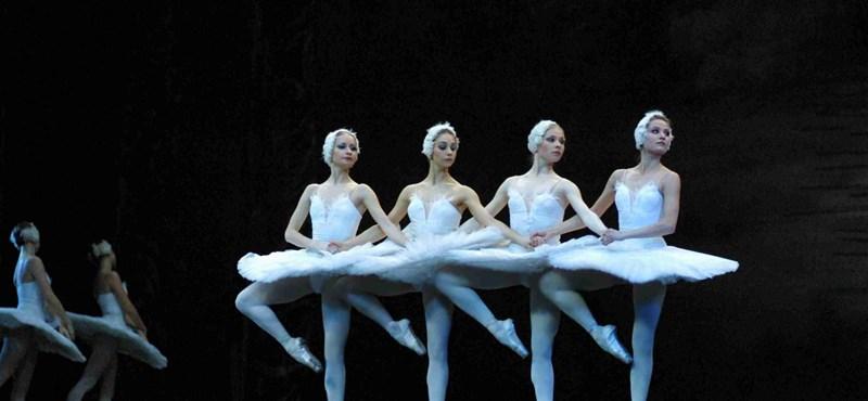 Mennyibe kerülnek 2012 szeptemberétől a művészeti képzések?