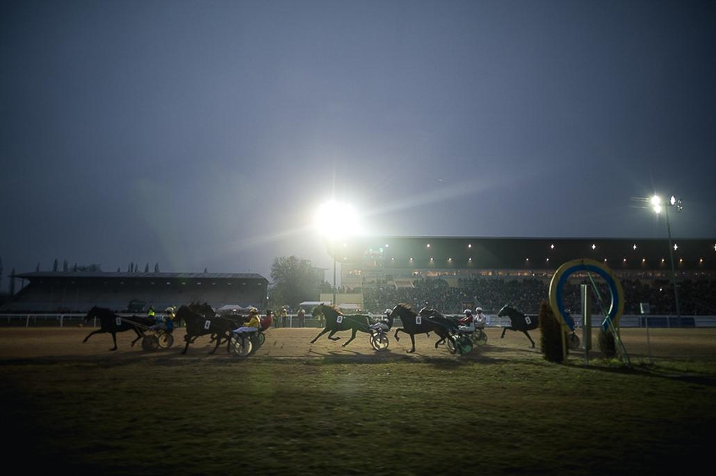 Újév, szilveszter 2014, ügető, lóverseny