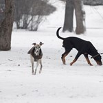 Bekeményít a tél: havat, ónos esőt kapunk a nyakunkba erős széllel - térkép