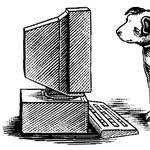 Megdobta a hazai PC-eladásokat a Windows XP kivégzése