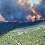 Se han reportado casi 500 muertes relacionadas con el calor en Columbia Británica, Canadá.