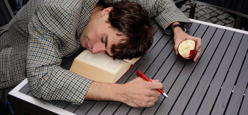 Ez a cég prémiumot ad a dolgozóinak, ha legalább napi hét órát alszanak