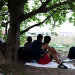 A polgármester szerint nincs gond azzal, hogy valaki az önkormányzat nevében hergeli a lakosságot a menekültek ellen