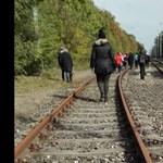 Migránsoknak néztek egy Erasmus-diákcsoportot a déli határnál, rendőrt hívtak rájuk