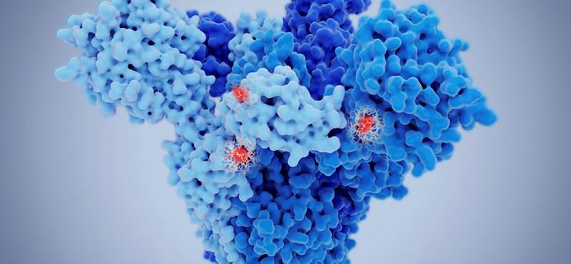 Az NNK virológusa szerint nem kizárt, hogy a brit mutáció miatt módosítani kell a vakcinákon