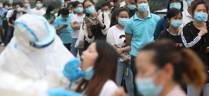 3535 főre nőtt a fertőzöttek száma, hétfőtől lazulnak a korlátozások - hírek a koronavírusról percről percre