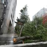 Nőtt a Japánban pusztító tájfun áldozatainak száma