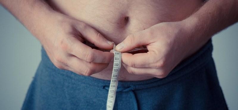 Összefüggés lehet a politikusok elhízása és a korrupció között