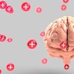 Tudja, miért olyan nagy az agya? A kutatók már rájöttek