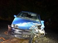 Váratlan segítséggel kaptak el egy cserbenhagyó autóst a rendőrök
