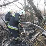 Már ötven tűzoltó a csóri nádastűznél