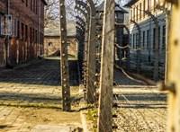 75 éve szabadult fel Auschwitz