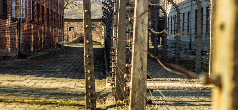 Margaritisz Szhinasz: Auschwitz, az emlékezésen túl