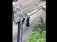 Ha nem látja, nem hiszi el: lábbal betonoztak le egy úthibát Budapesten – videó