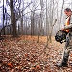 A vadállomány felét pusztították ki orvvadászok Ukrajnában