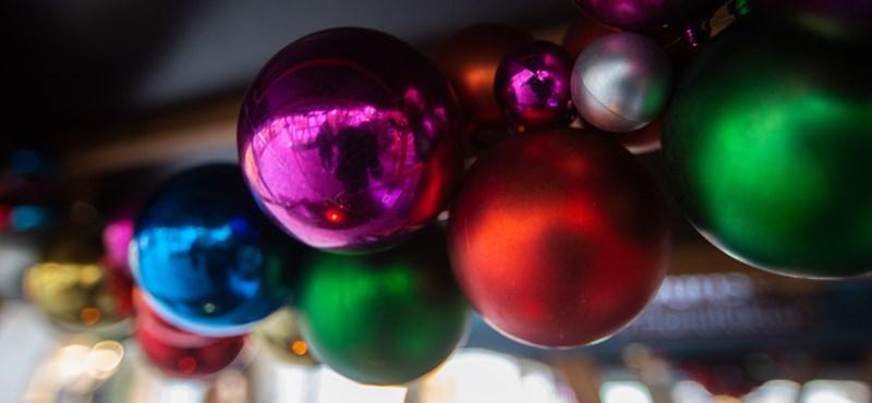 Karácsonyfa nőtt ki egy kátyúból Csömörön