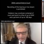 Macskaarccal jelentkezett be egy ügyvéd az online tárgyalásra