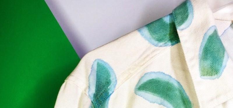 Jöhetnek a fotoszintetizáló pólók