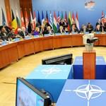 Egyelőre nem lesz közös NATO-ellencsapás a párizsi merényletek miatt