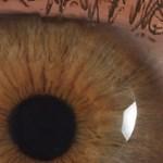 Hatvan hangyatetemet találtak egy 11 éves kislány szemében