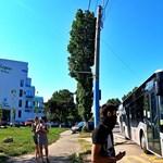 Szelektív hulladékért adnak buszjegyet egy román városban