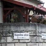 Lóadó, traktoradó, Simicska-adó: amikor meglódul a települések fantáziája