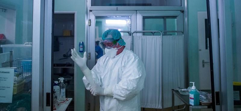 Öt új koronavírus-fertőzöttet találtak Magyarországon
