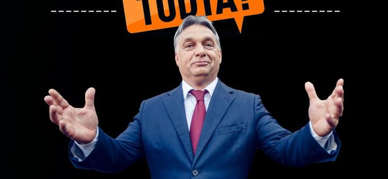 Ceglédi: Külföldről finanszírozzák a Fidesz kampányát