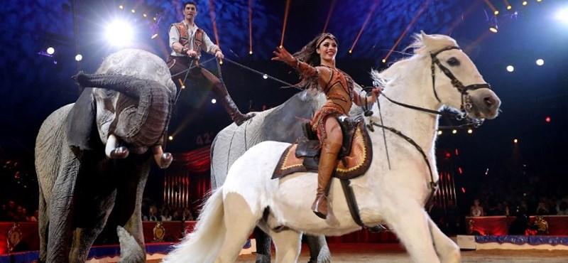 Cirkuszba, színházba és hangversenyre is mehet a kanapéjáról