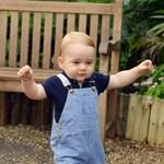 Fotó: György herceg majdnem egyéves és nagyon cuki